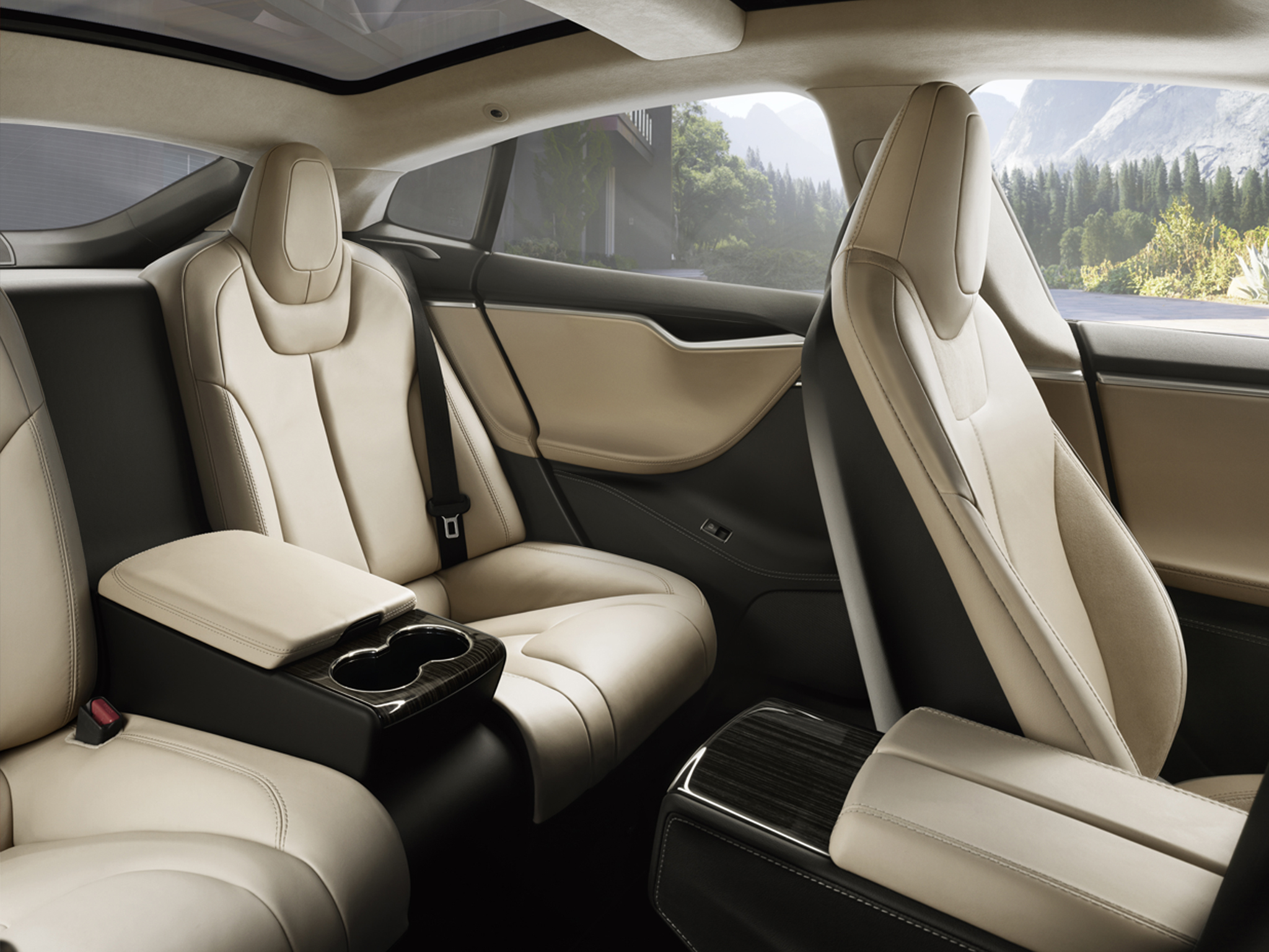 Tesla-executive-rear-seats