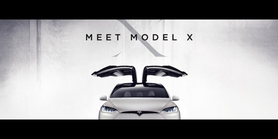 meet model x 2-1