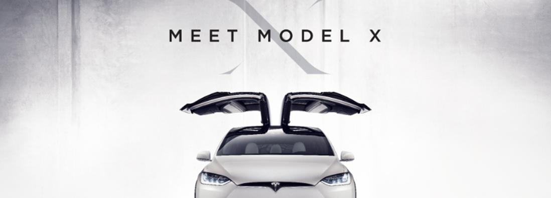 meet the model x