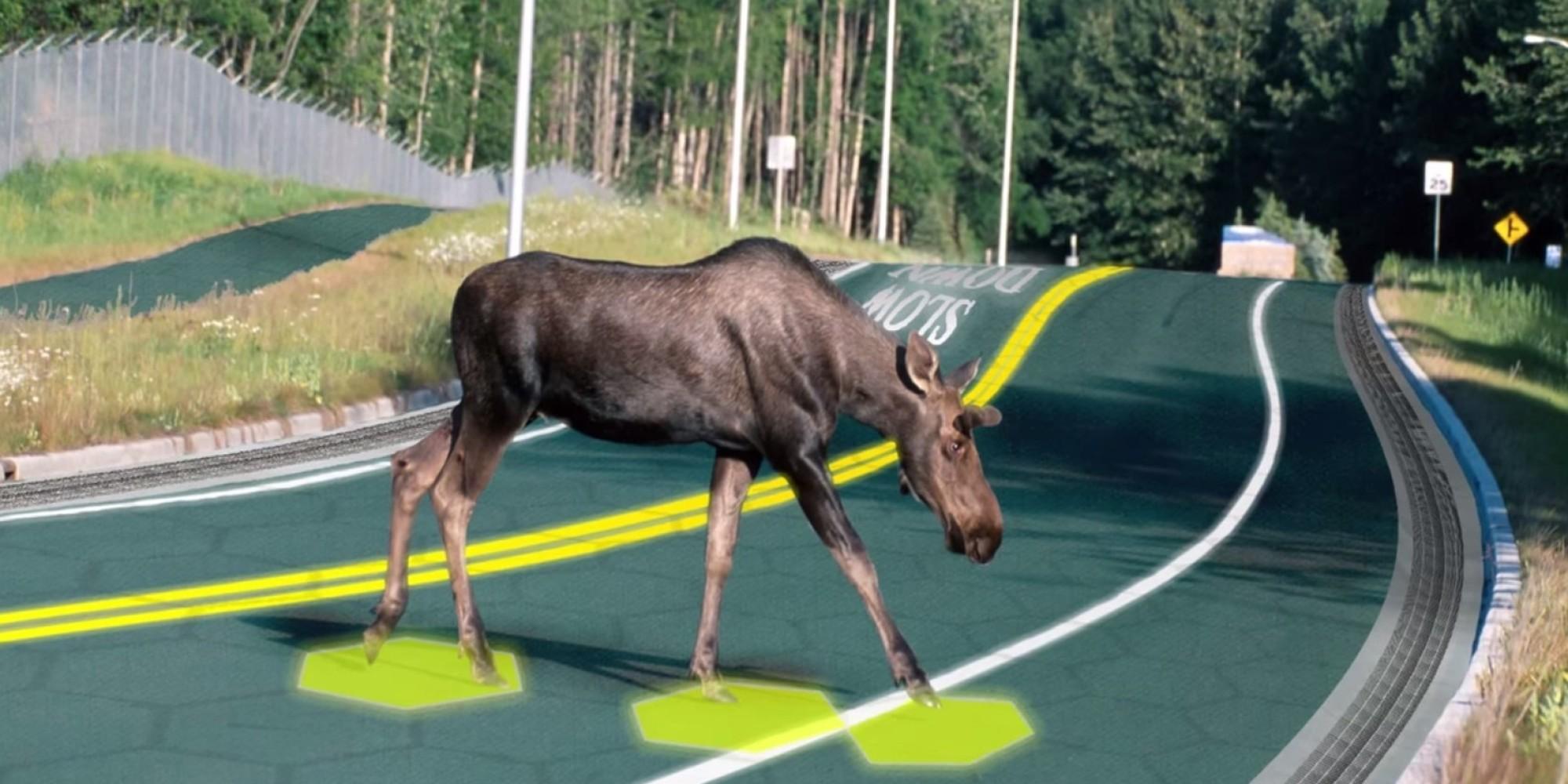 solar-roadway-moose