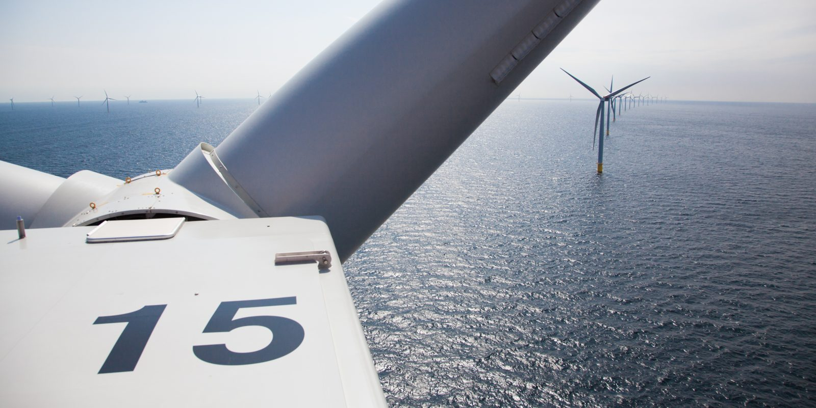 EGEB: NJ to get biggest offshore wind farm, solar farm's 'avian incident,' carbon-free UK power