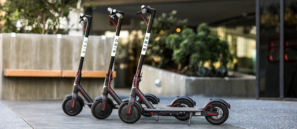 Why is everyone going crazy over electric scooters in
