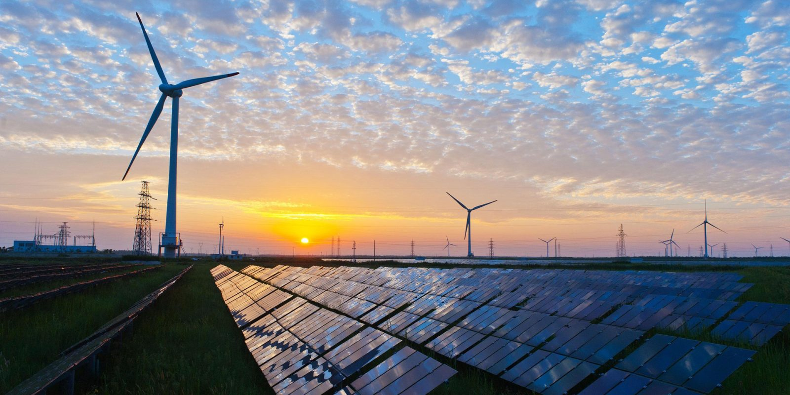 Solar, wind to generate half of the world's electricity by 2050, report says — is that enough?
