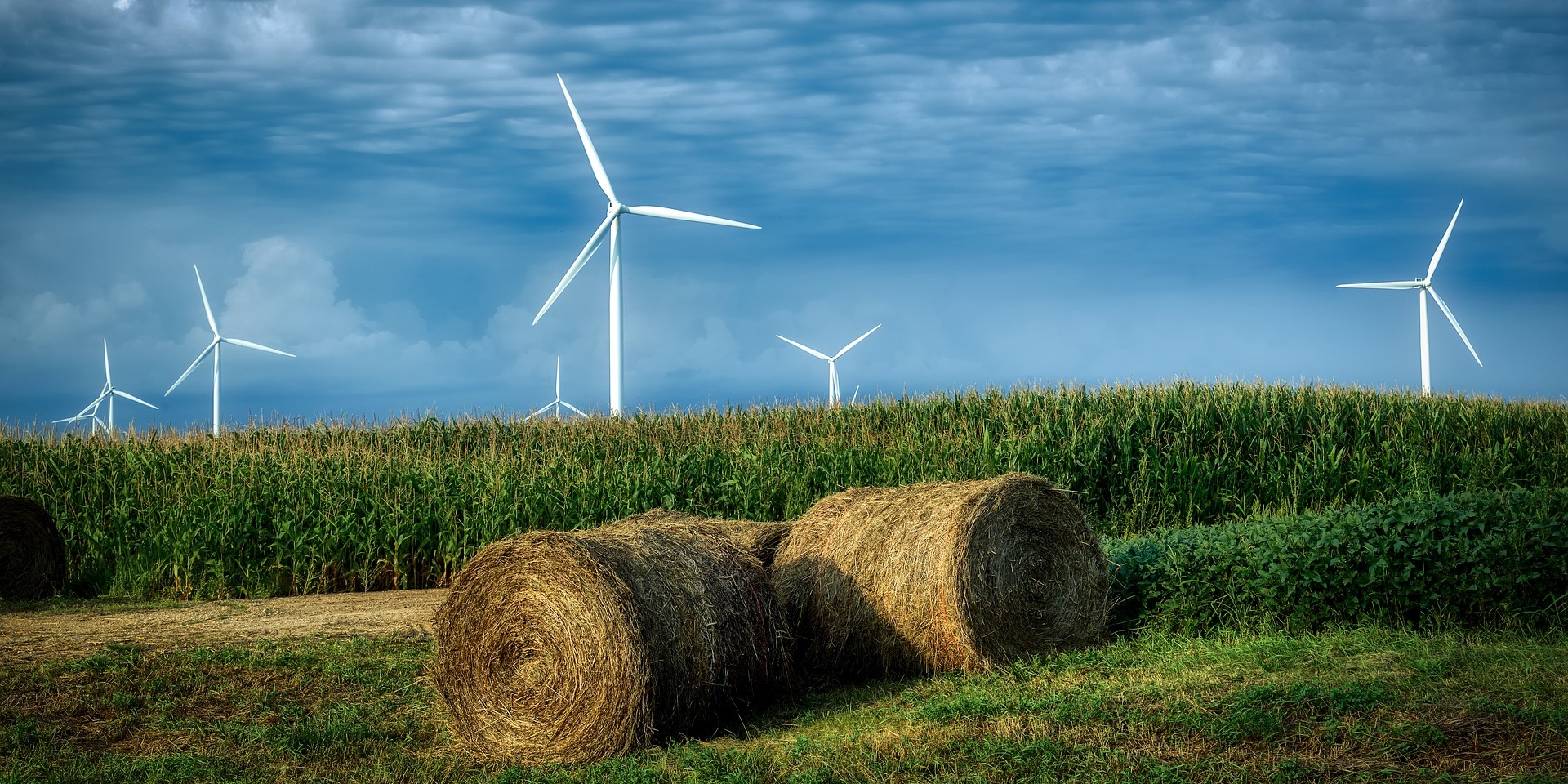 EGEB: Starbucks solar stores, Iowa voters on climate, crowdfunding a wind farm, and more