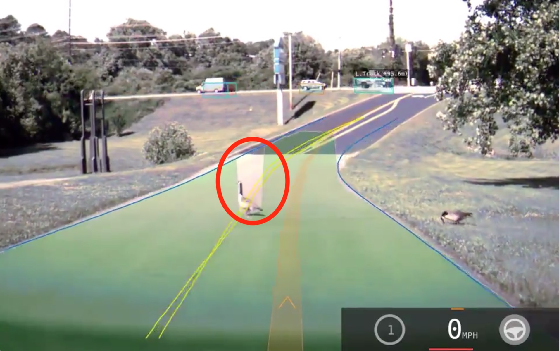 Watch how Tesla Autopilot sees a goose crossing the road