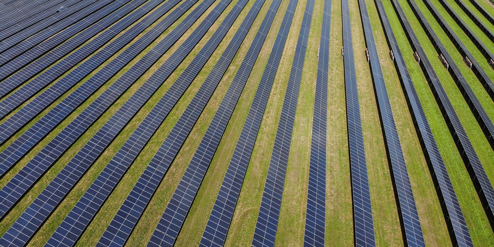EGEB: New solar farms in Florida, a huge solar project in Morocco, offshore wind battles mollusks
