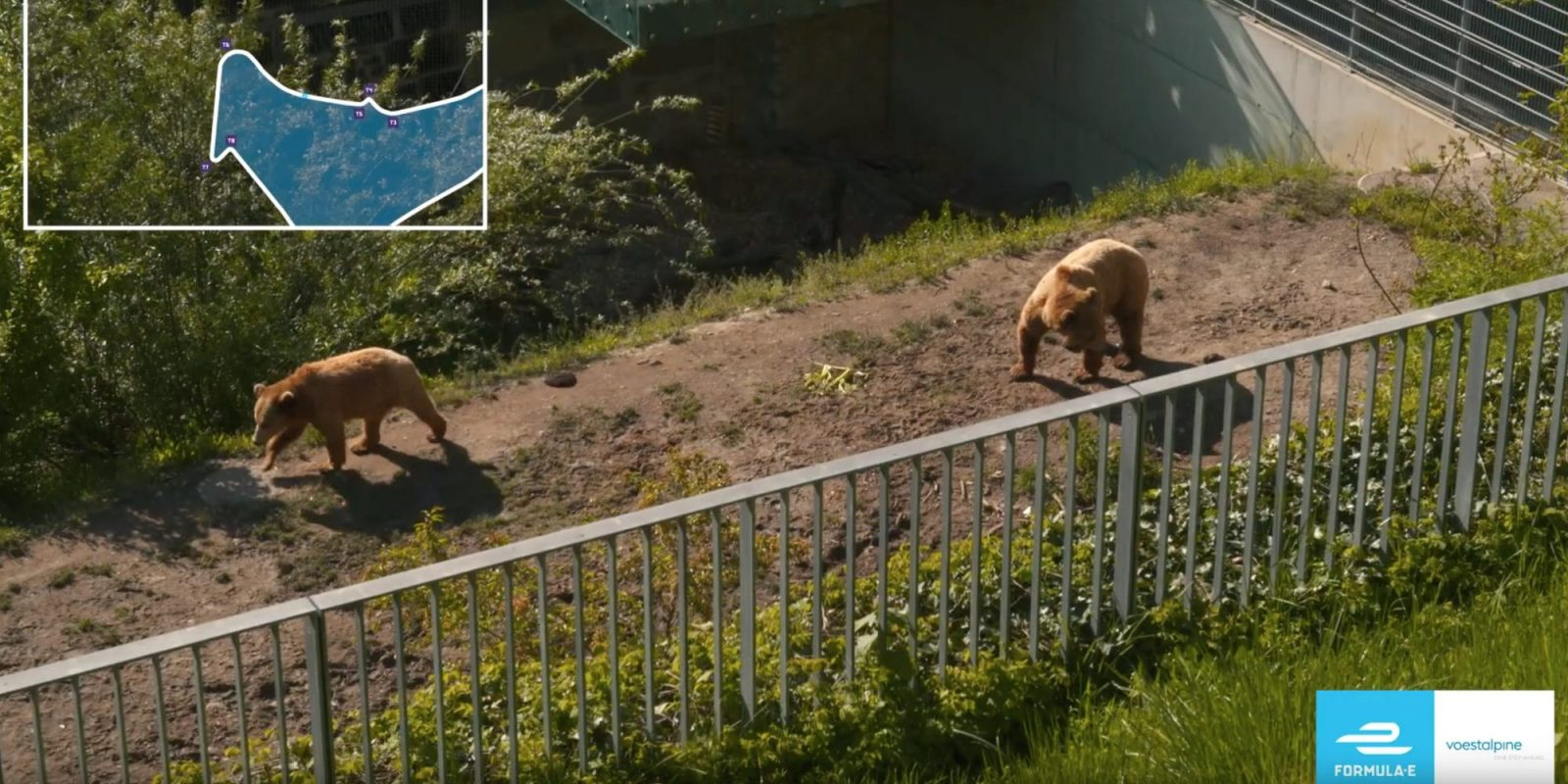 Audi chases Techeetah at the Bern ePrix on Saturday, at a track with…a bear pit!?