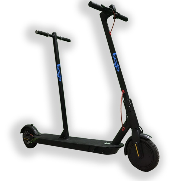 bogo two-person electric scooter