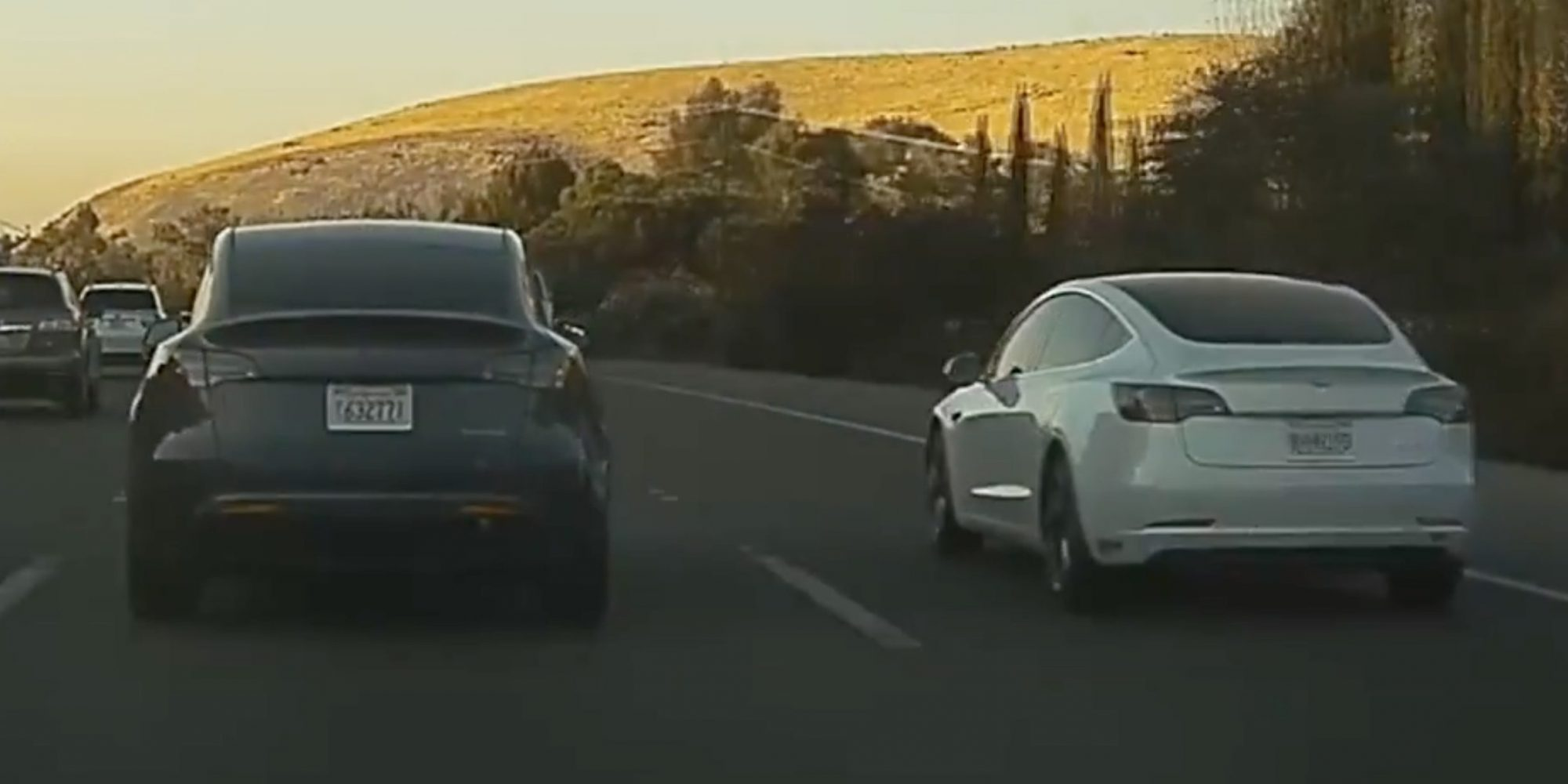 Tesla Model Y Spotted Driving Side By Side With Model 3