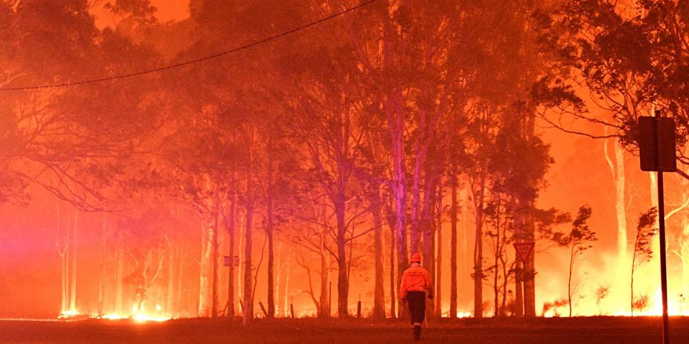"Kết quả hình ảnh cho fire forest in australia"""