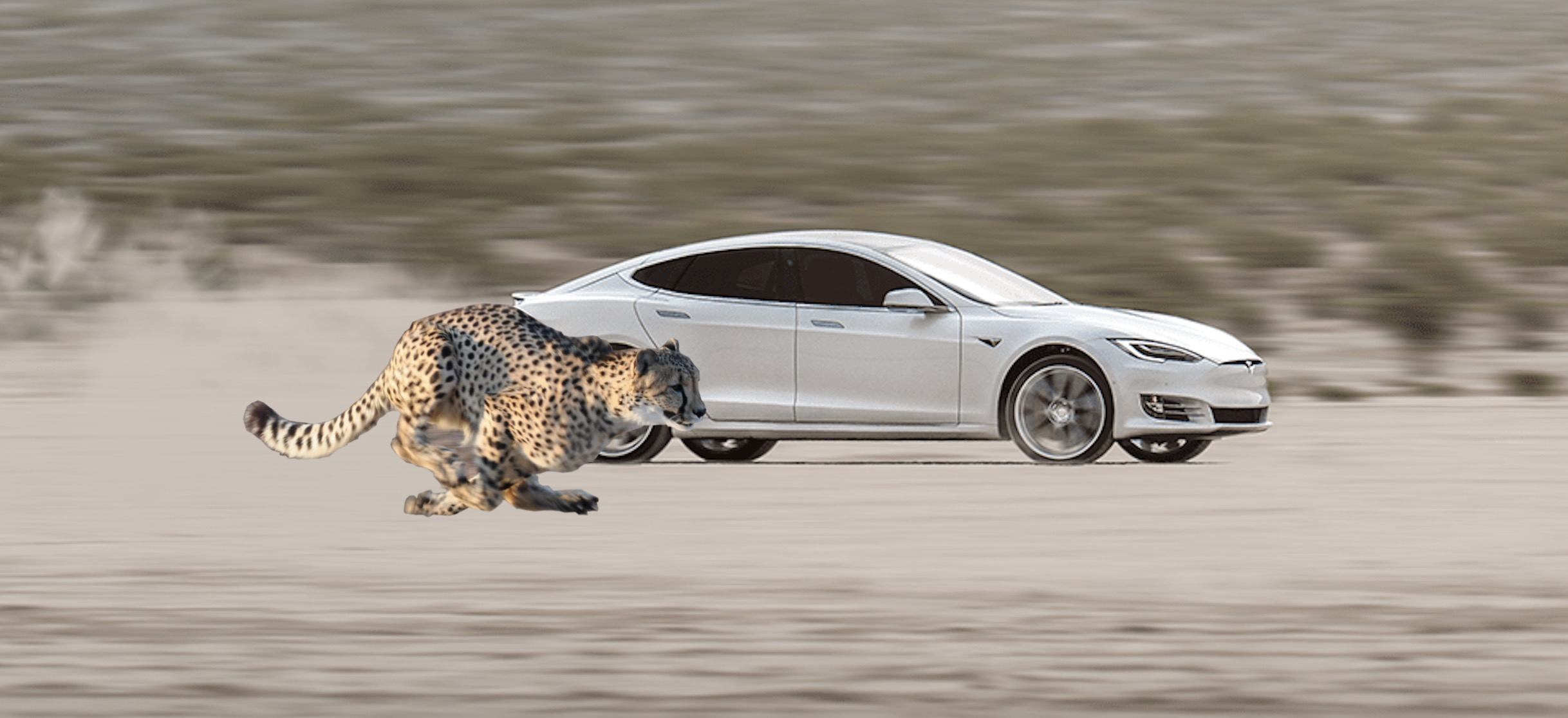 Tesla is working on something called 'Cheetah stance' for the perfect launch - Electrek