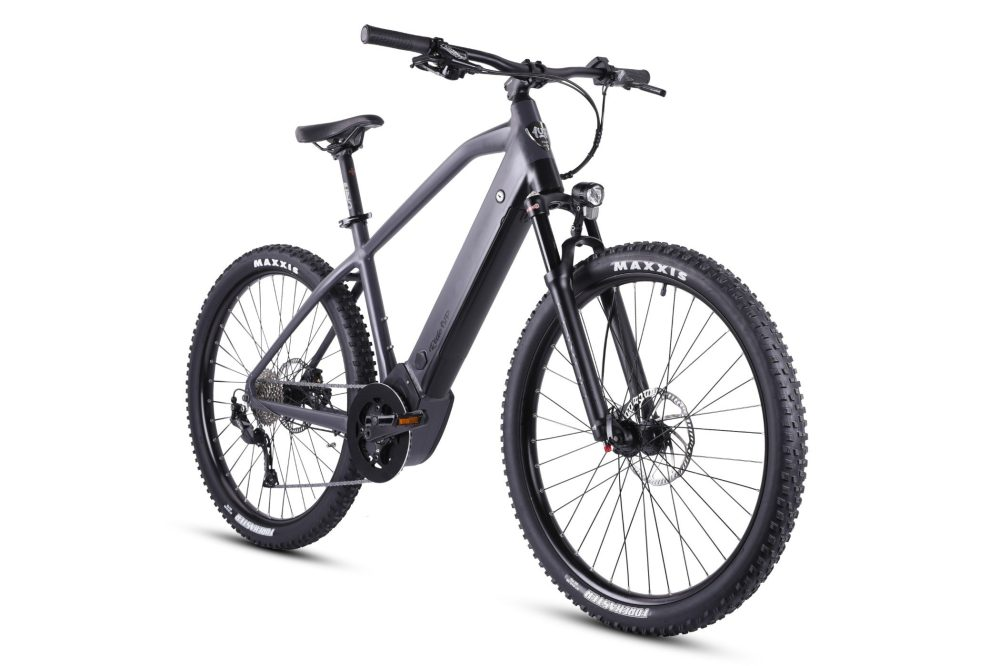 E-bike predictions for 2021: What to expect in the electric bicycle industry this year